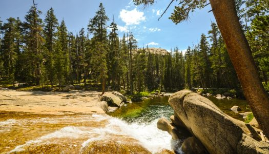 3 National Wild and Scenic Rivers to Explore