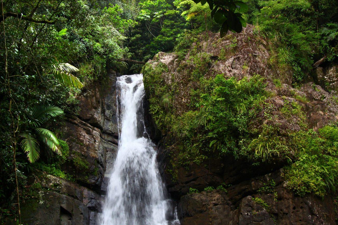 La Mina Falls - El Yunque National Forest - Puerto Rico