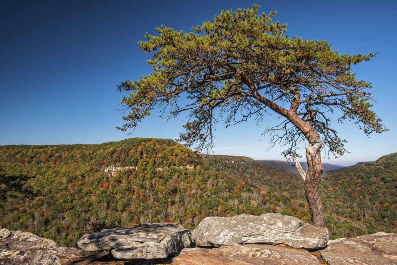 Fall Creek Falls State Park