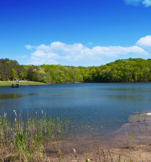 lake at Fall Creek Falls State Park