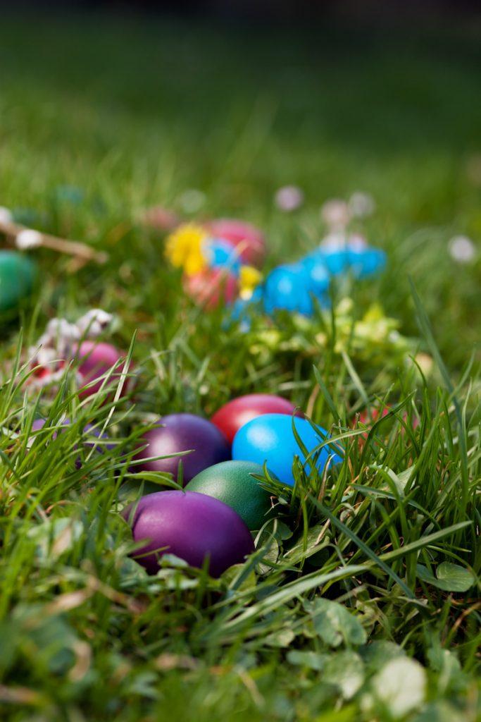 World's Largest Easter Egg Hunt
