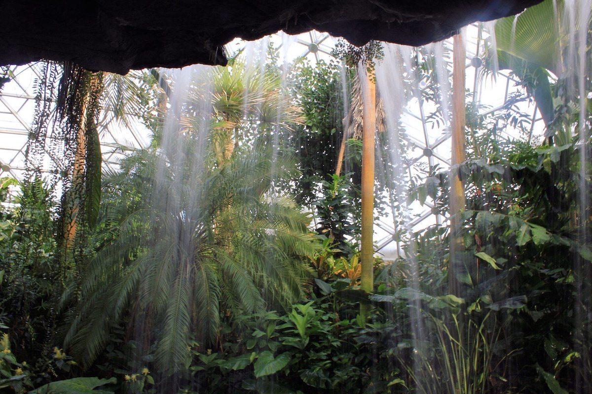 Visiting Small Town Jacksonville, Oregon: Arboretum