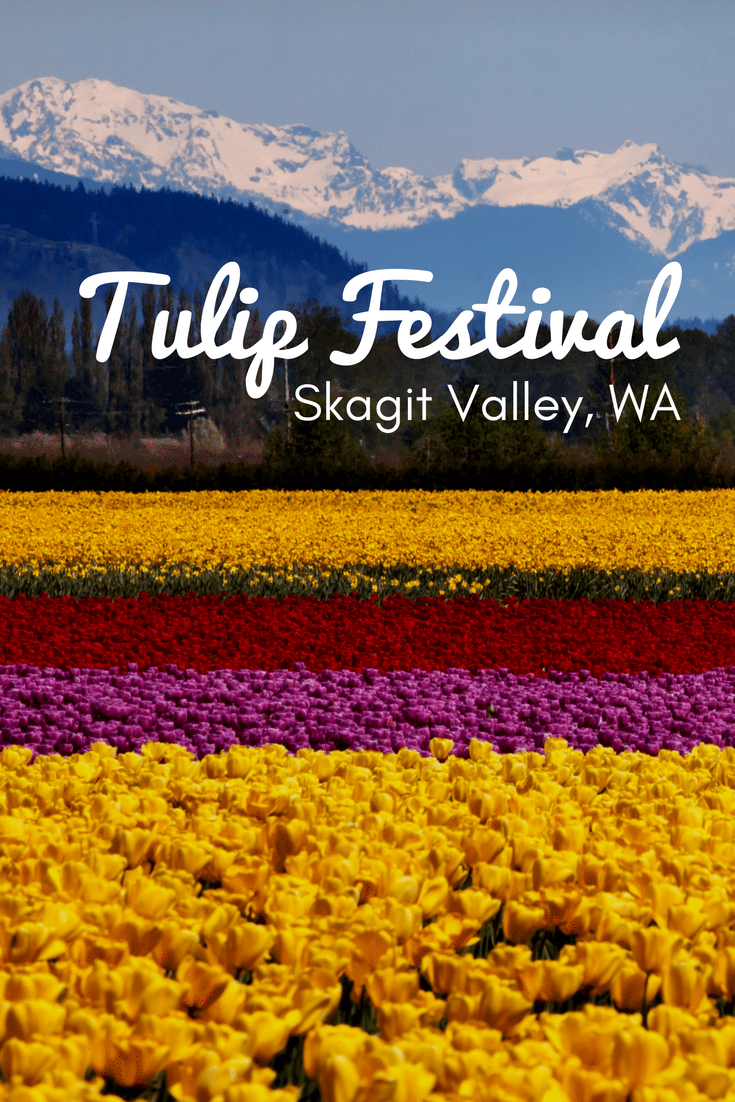 Tiptoe through the tulips at this breathtaking festival in Washington.