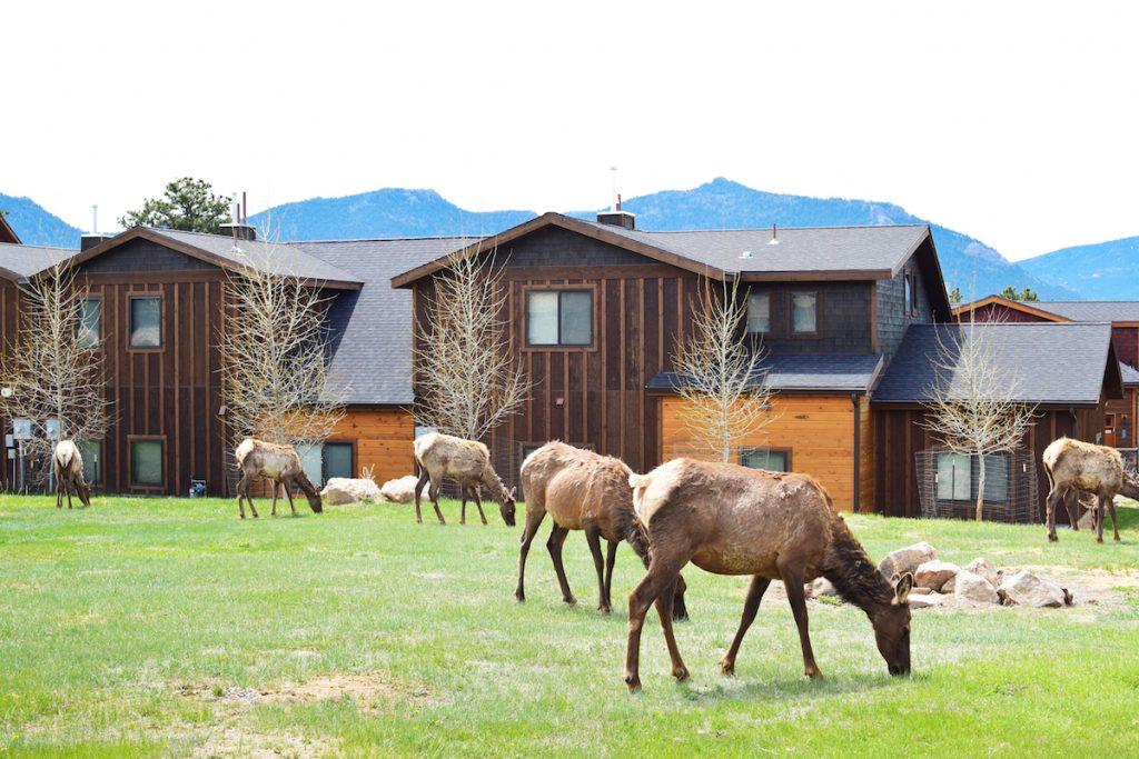 Lodging in Estes Park, Colorado