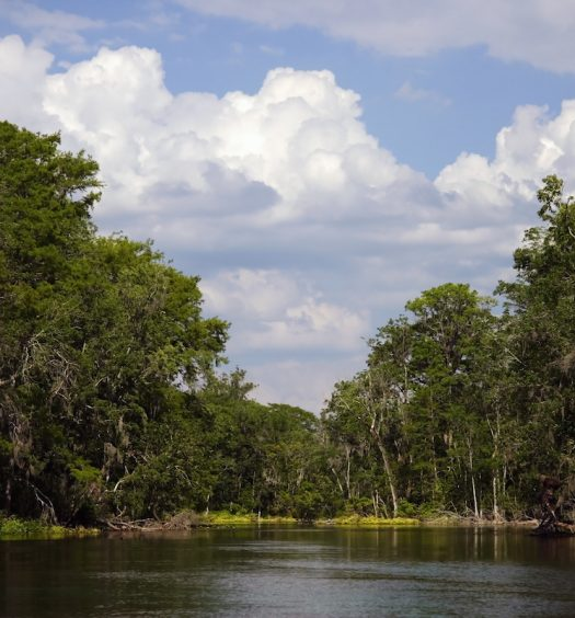 Silver River State Park in Ocala, Florida