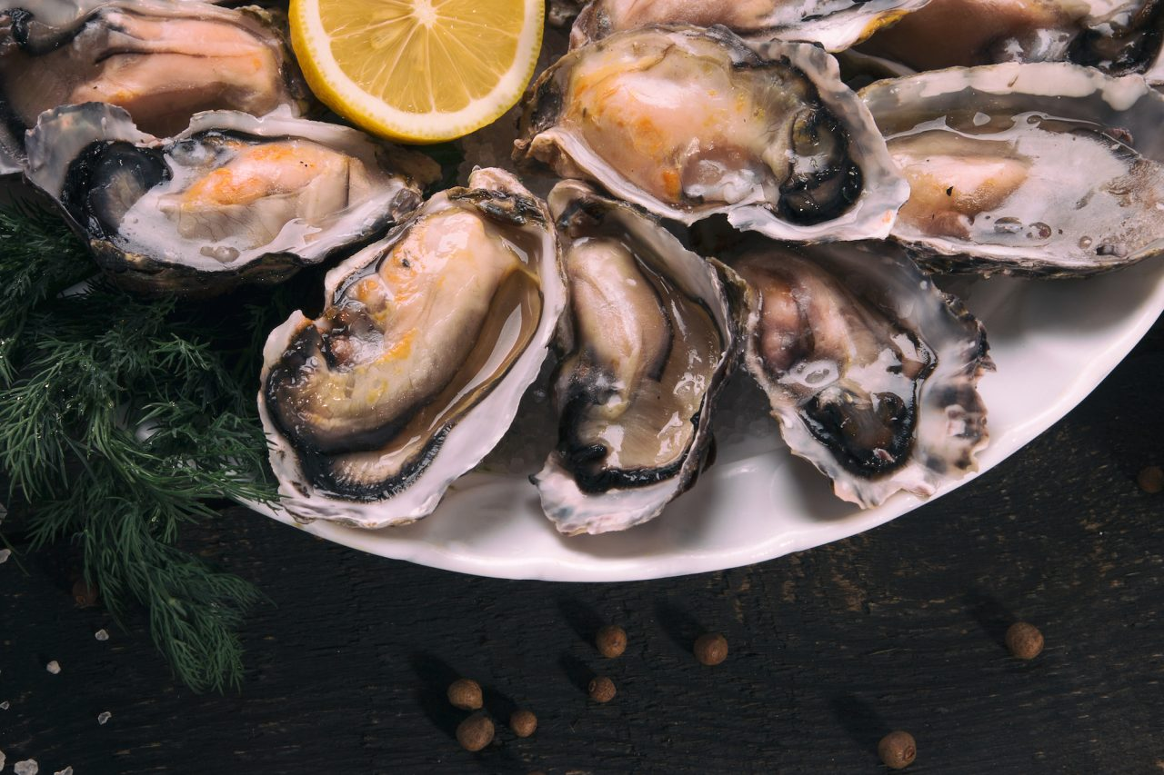 Chow Down at the Legal Sea Foods Oyster Festival