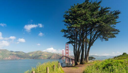 Marin Headlands at Golden Gate Park