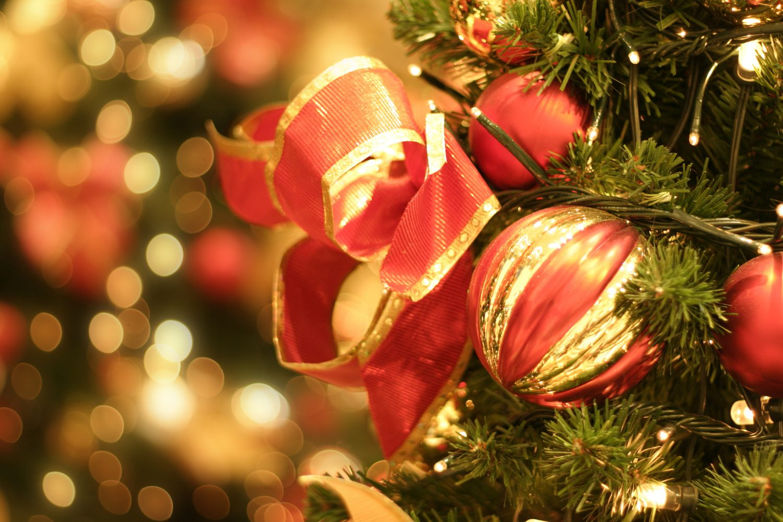 christmas tree and lights
