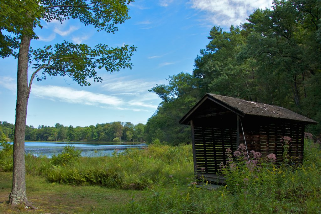 A serene environment, overlooking the lake, in Innisfree Gardens, NY.