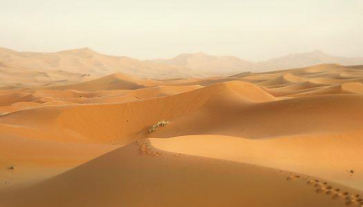 Visit the Amargosa Sand Dunes